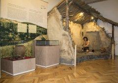 muzeu_1-015.jpg